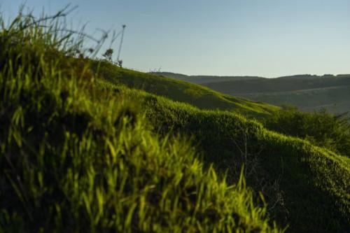 Hill Grass Meadow Nature Landscape  - moroczgyozo / Pixabay